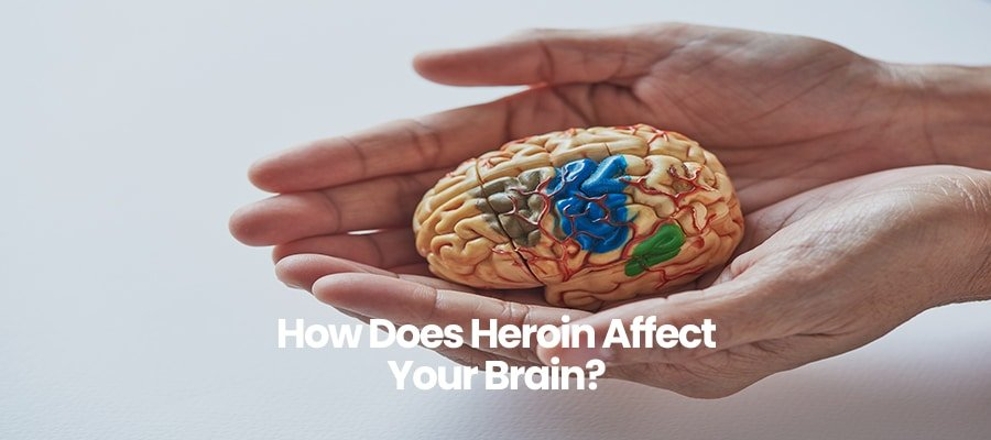 How Does Heroin Affect Your Brain?
